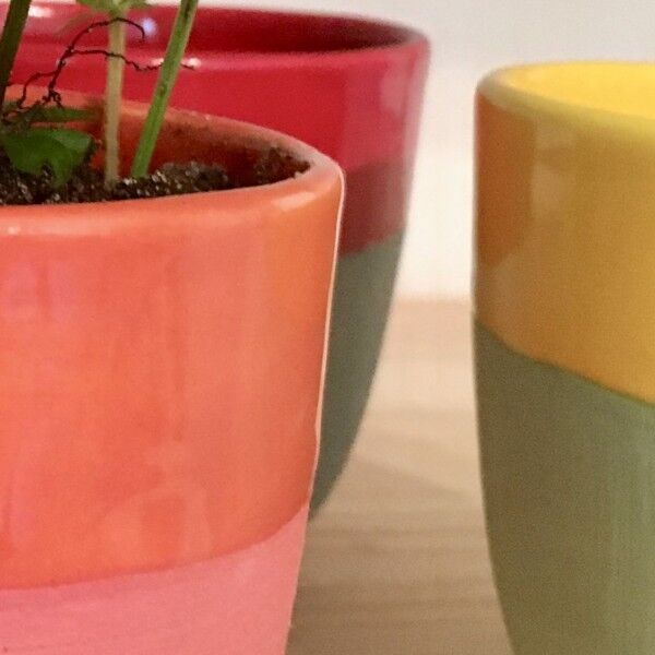 Handmade Ceramic Planter, various bright colours, black and brown, half glazed - Germany